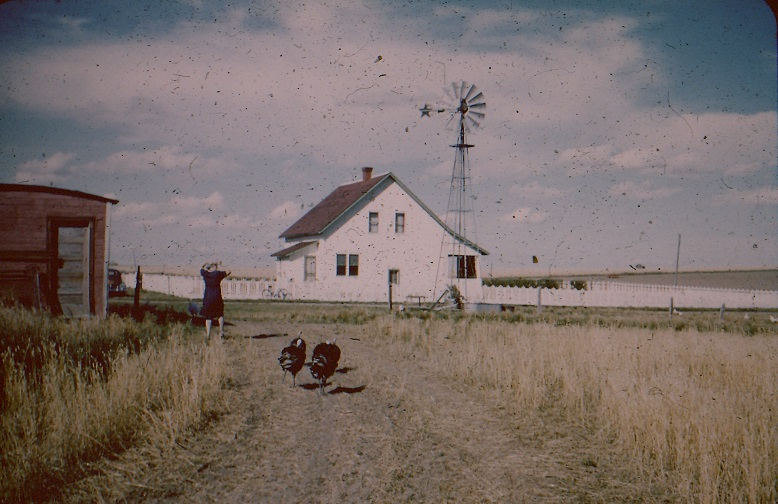 1954 Thompson farm 1